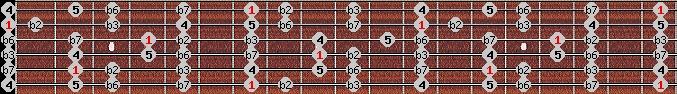 phrygian scale on key B for Guitar