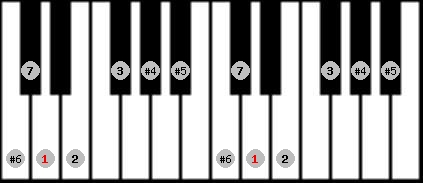 leading whole tone scale on key D for Piano